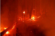 فیلم | شبهای سرخ آمازون از آتشسوزی مستمر